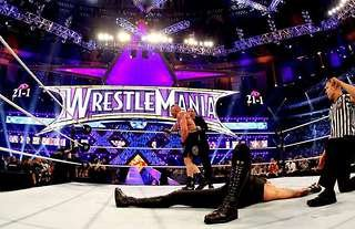The Undertaker's streak was ended at WrestleMania 30