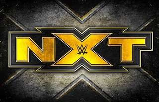 The next WWE NXT call up won't be far away