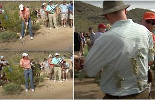 Rory McIlroy once left unfortunate spectator covered in cacti after shanking golf shot